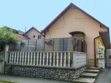 Accommodation Teiu, Residence Dorina Apartament