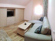 Cazare Sibiel, Apartament Delia