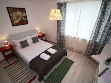 Accommodation Teremia Mare Bath, Confort University Apartment