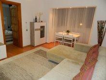 Apartment Sânmihaiu German Thermal Bath, Iulius Mall Confort Apartament