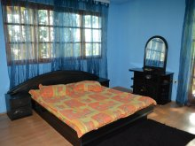 Accommodation Câmp, Cristian Guesthouse