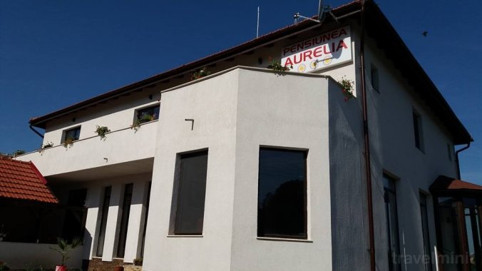 Pensiunea Aurelia Șiria