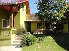 Accommodation Cetatea Rupea, Hajnal Guesthouse