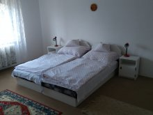Accommodation Zalakaros, Csillagvár Vacation Home