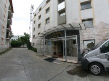 Hotel Temes (Timiș) megye, Euro Hotel