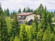 Pensiune Piatra Secuiului, Pensiunea Vis Alpin