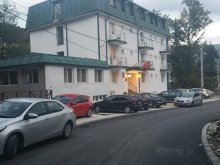 Accommodation Prahova county, Green Palace Hotel