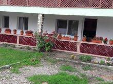 Accommodation Huci, Cristian & Marinela Guesthouse