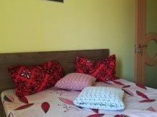 Accommodation Săldăbagiu de Munte, Ale Guesthouse