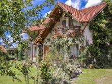 Chalet Toplița, Csiki-Lak Guesthouse