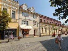 Accommodation Bixad, Csíki B&B