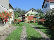 Accommodation Valea Șesii (Bucium), Garden City Apartment