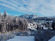 Accommodation Tohanu Nou, Tichet de vacanță, Fantasy Villa