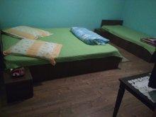 Accommodation Dealu Doștatului, Teo Guesthouse