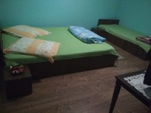 Guesthouse Ruget, Teo Guesthouse