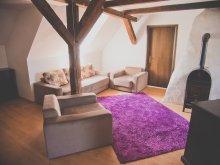 Accommodation Zetea, Tacsko Apartment