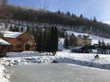 Kulcsosház Homoróddaróc (Drăușeni), Hétvezér Kulcsosház II