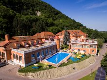 Accommodation Komárom-Esztergom county, Bellevue Konferencia és Wellness Hotel