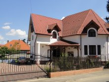 Bed & breakfast Sibiu county, Millenium B&B