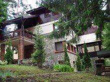 Villa Alsómoécs (Moieciu de Jos), Harmony Panzió