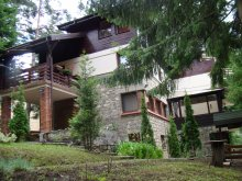Villa Pădurenii, Tichet de vacanță, Harmony Panzió