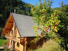 Accommodation Răchițele, Larix Guesthouse