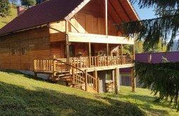 Accommodation Răchitiș, Flower Bell Guesthouse