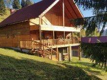 Cazare Valea Lupului, Tichet de vacanță, Casa de oaspeți Clopoṭel