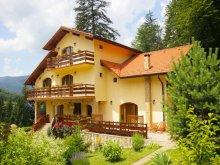 Accommodation Valea Cetățuia, Casa Anca Guesthouse