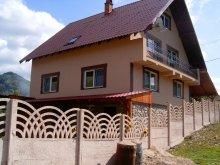 Vilă Mustești, Vila Casa Calin Coada Lacului