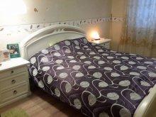 Accommodation Miskolc, Katica Apartament