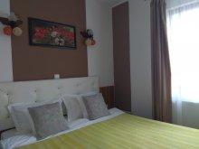 Accommodation Cetățeni, Casa Traian Guesthouse