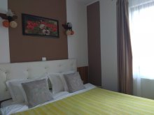 Accommodation Lerești, Casa Traian Guesthouse