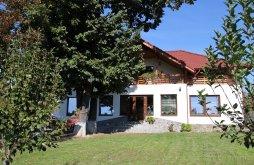 Szállás Steic, Tichet de vacanță / Card de vacanță, La Casa Boierului Panzió