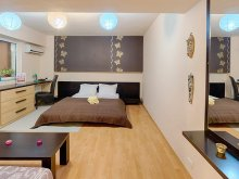 Accommodation Mânăstioara, Piața Romană Apartament