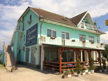 Accommodation Ciudanovița, Simina Guesthouse