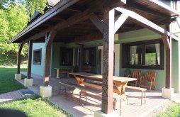 Kulcsosház Recsenyéd (Rareș), Szejke Villa l