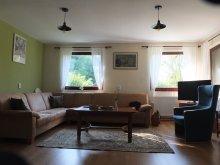 Accommodation Zetea, Szejke Villa l