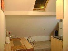 Accommodation Rânca, Loft Apartment