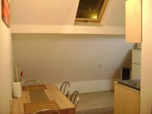 Accommodation Sibiu, Loft Apartment