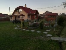 Vendégház Maroshévíz (Toplița), Mady Vendégház