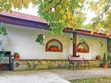 Casă de oaspeți Mezőnyárád, Casa de vacanță Dupla