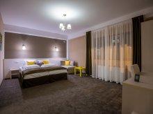 Accommodation Rucăr, Holiday Villa