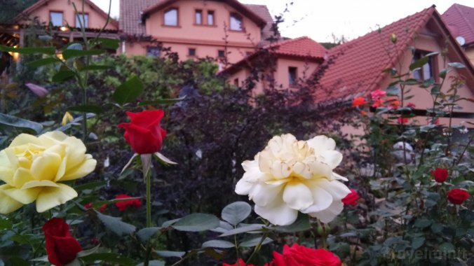 Adam Guesthouse Sighisoara