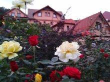 Casă de oaspeți România, Casa de oaspeţi Adam