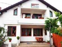 Accommodation Țela, Ladyna Guesthouse