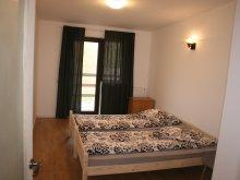 Accommodation Satu Nou, Morărița B&B