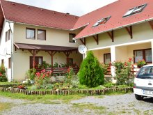 Accommodation Trebeș, Bagolyvár Guesthouse