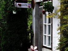 Accommodation Mucsfa, Szeli Apartment
