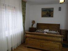 Apartament Ionești, Casa Binu